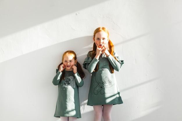 Deux Soeurs, étreindre, Cheveux Rouges, Taches De Rousseur, Joie, Rire, Famille Photo Premium