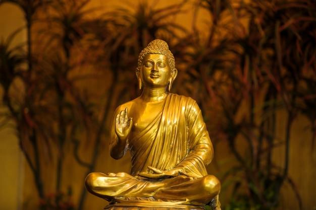 Dieu goutama bouddha Photo Premium