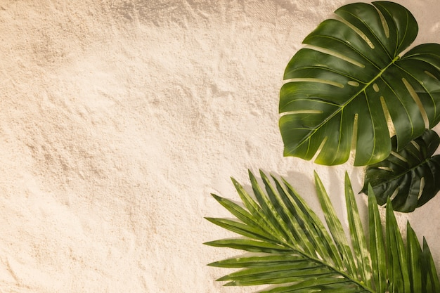 Différentes feuilles sur le sable Photo gratuit