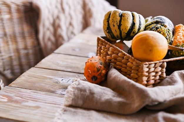 Différentes mini citrouilles de thanksgiving sur une table en bois rustique. Photo Premium