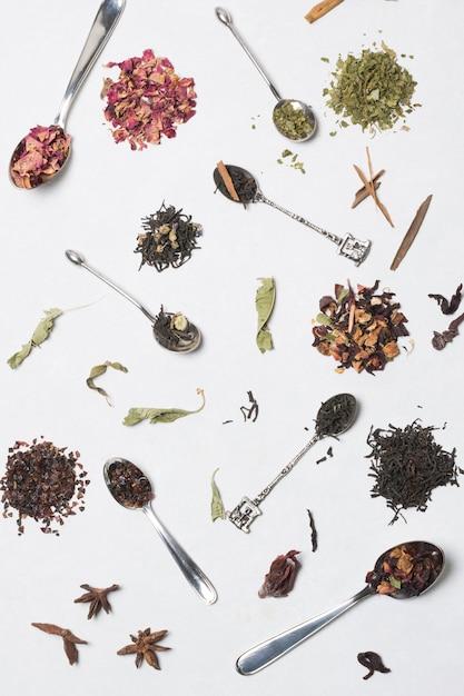 Différents types d'herbes avec des cuillères isolés sur fond blanc Photo gratuit