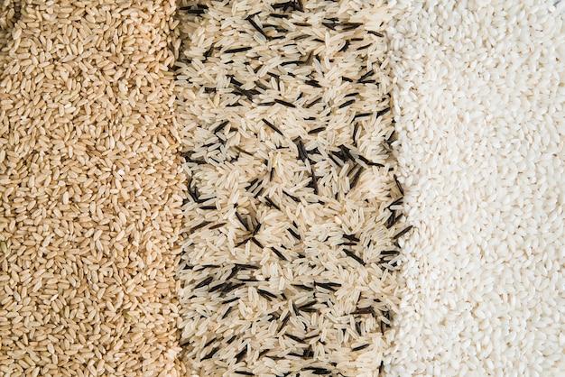 Différents types de riz dispersés sur la table Photo gratuit