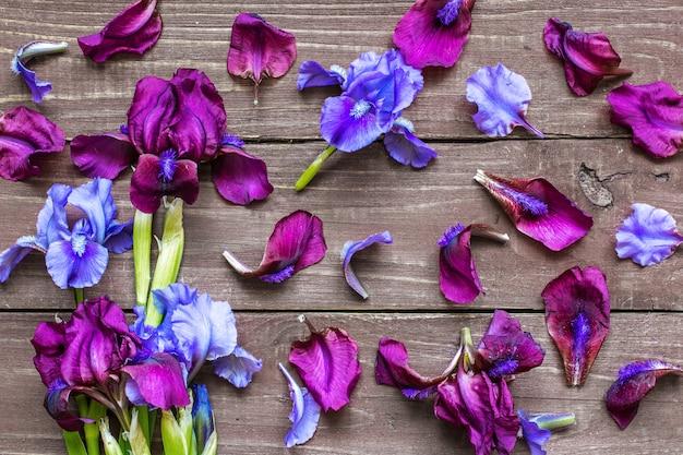 Disposition Créative Faite De Fleurs Et De Pétales D'iris Photo Premium