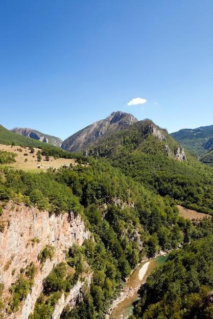 District De Montagne - Les Montagnes Couvertes De Divers Arbres, D'autres Plantes. Photo Premium