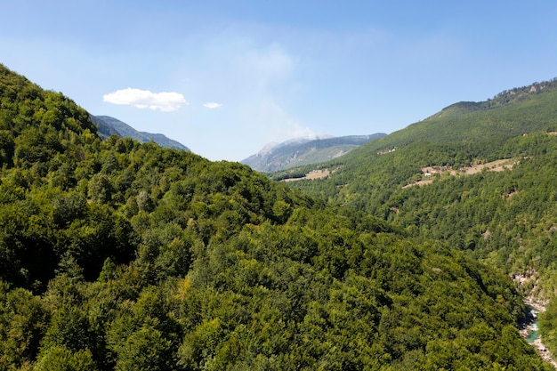 District De Montagne - Les Montagnes Couvertes De Divers Arbres, D'autres Plantes. Photo Premium