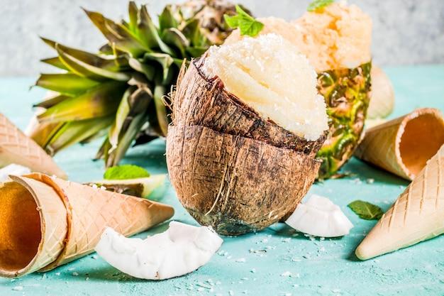 Divers sorbet de glace tropicale Photo Premium
