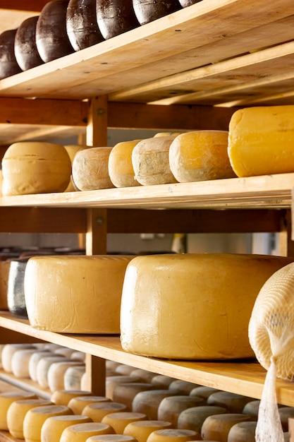 Diverses meules à fromage affiné Photo gratuit