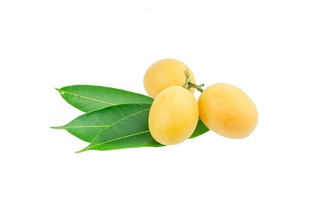 Doux fruits thaïlandais de prune mariale isolé sur fond blanc Photo Premium