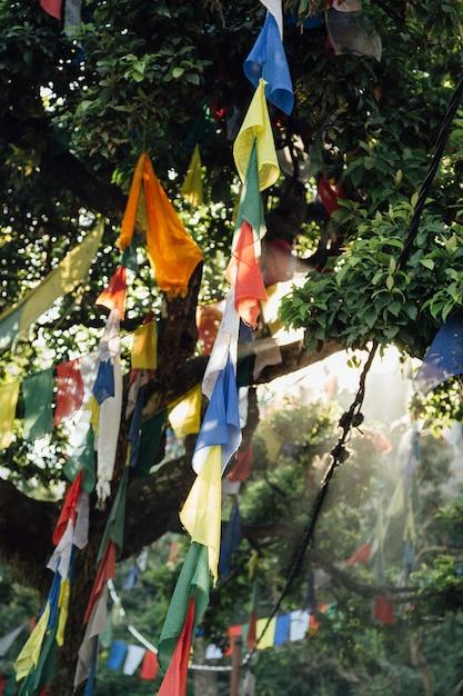 Drapeaux Suspendus Aux Arbres Au Népal Photo gratuit