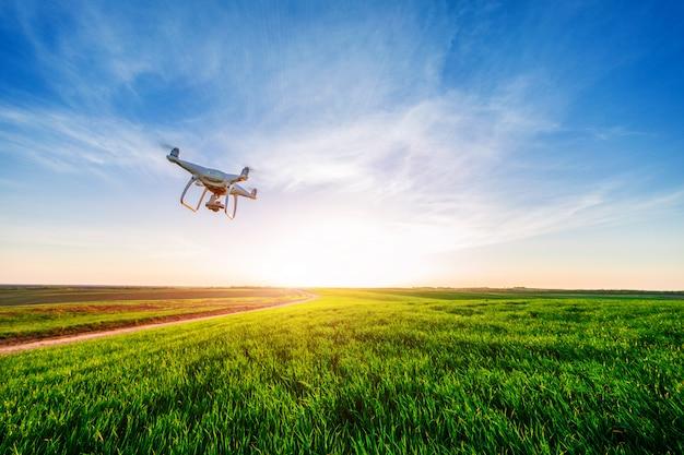 Drone Quad Copter Sur Un Champ De Maïs Jaune Photo Premium
