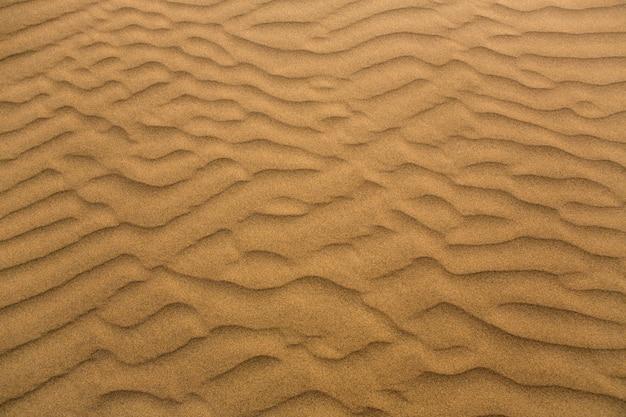 Dunes de sable du désert à maspalomas, grande canarie Photo Premium