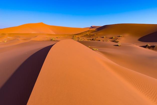 Dunes de sossusvlei, parc national de namib naukluft, désert du namib, destination de voyage pittoresque en namibie, afrique. Photo Premium