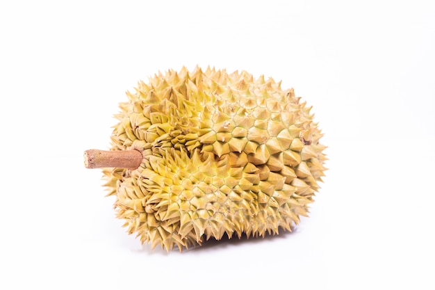 Durian isole sur fond blanc. Photo Premium
