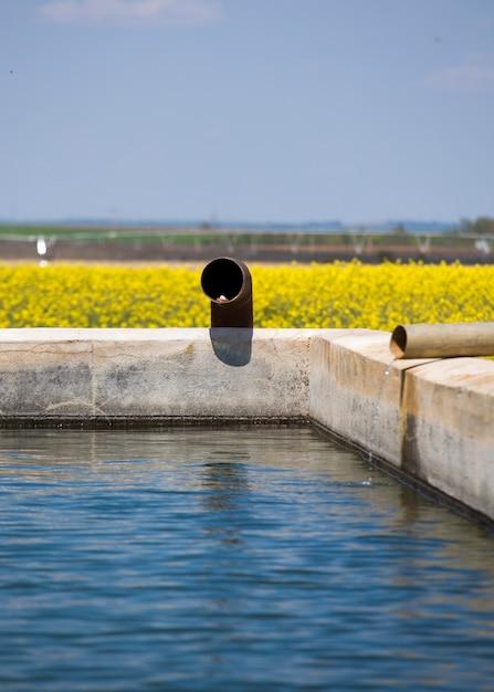 Eau Pour L'irrigation Photo Premium