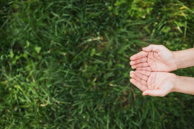 Eco concept avec les mains au-dessus de l'herbe Photo gratuit