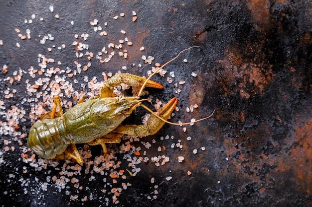 Écrevisses Crues, Bébé Homard. Nourriture D'été. Fruit De Mer. Photo Premium