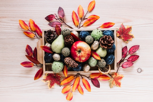 Éléments d'automne et fruits dans une boîte en bois Photo gratuit