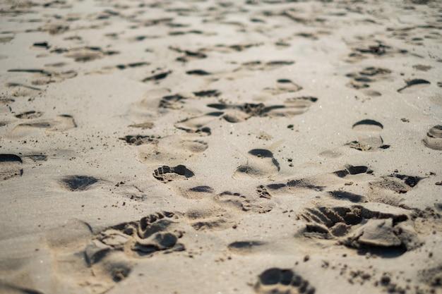 Des empreintes de pas sur le sable de l'air matinal. Photo Premium