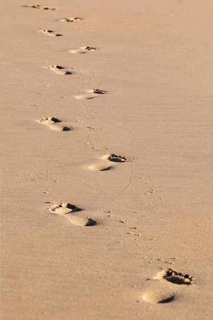 Empreintes de pas sentiers laissant au loin sur le sable Photo Premium