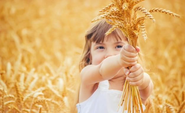 Enfant dans un champ de blé. mise au point sélective. Photo Premium