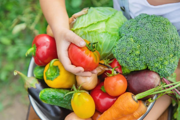Enfant dans le jardin avec des légumes dans ses mains. Photo Premium