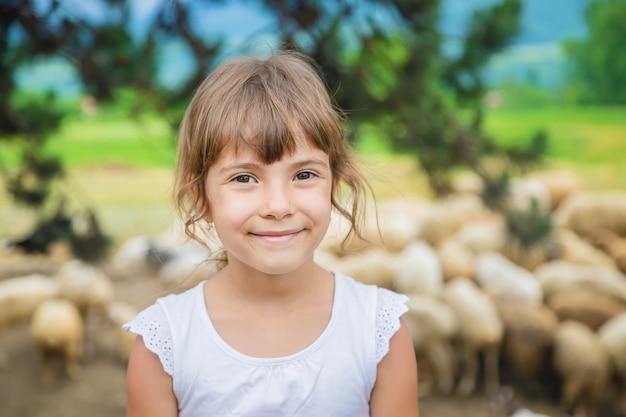 Un enfant regarde un troupeau de moutons. voyage en géorgie. Photo Premium