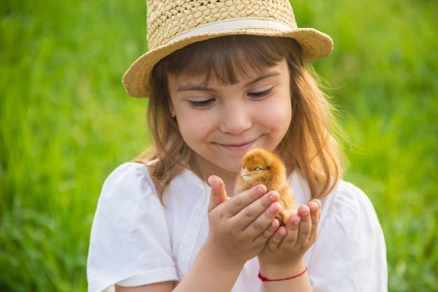 L'enfant tient un poulet dans ses mains. mise au point sélective. Photo Premium