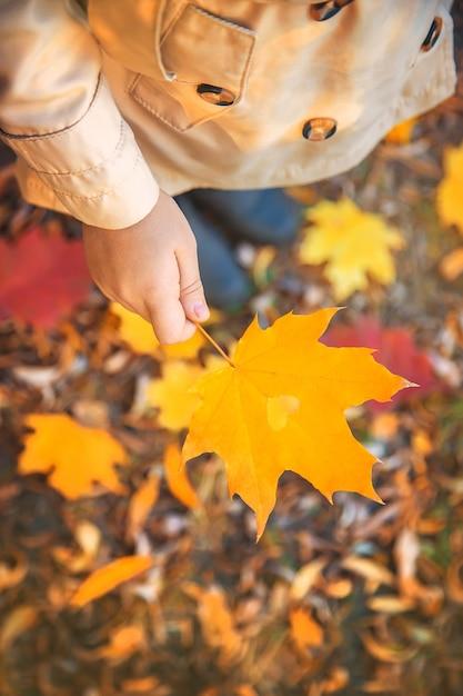 Enfants dans le parc avec des feuilles d'automne. mise au point sélective. Photo Premium