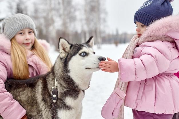Les enfants sortent et jouent avec un chien husky en hiver Photo Premium