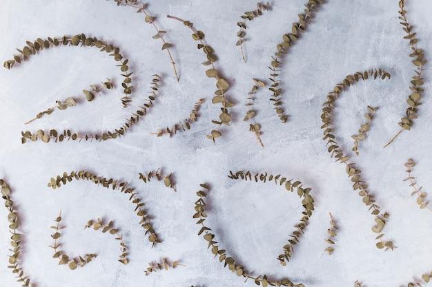 Ensemble de brindilles de plantes sèches Photo gratuit
