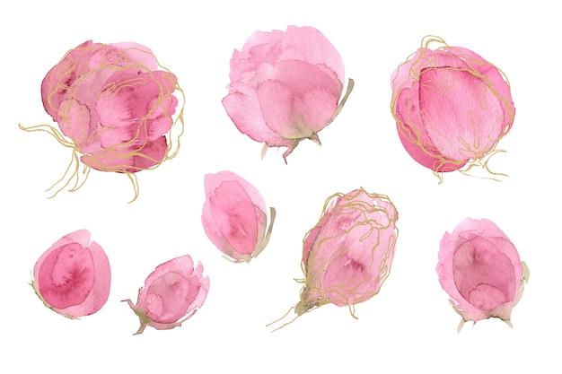Ensemble floral rose printemps et en été. pivoine Photo Premium