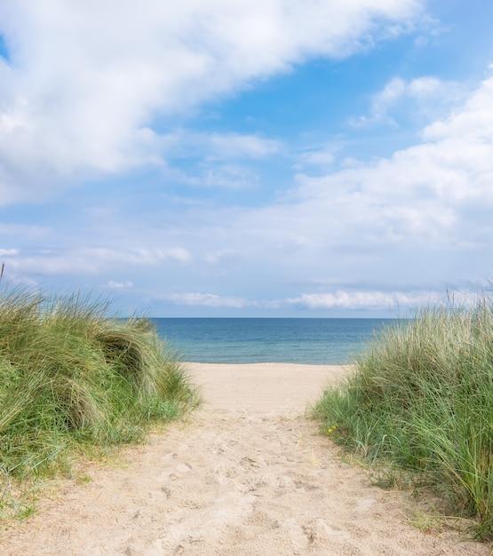 Entrée de la plage de l'île de rugen, nord de l'allemagne Photo Premium