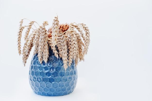 Épis de blé sur un vase bleu isolé sur blanc Photo Premium