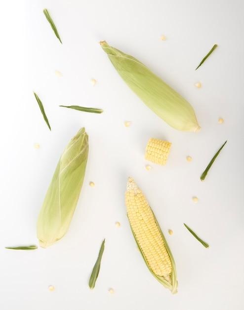 Épis de maïs sucré avec des coques Photo Premium