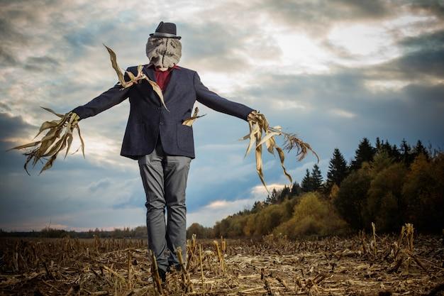 Épouvantail Se Dresse Dans Le Champ D'automne Contre Le Ciel Du Soir Photo Premium