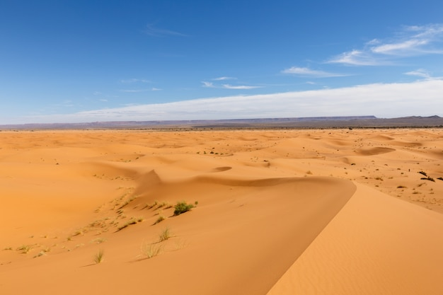 Erg chebbi au maroc Photo Premium