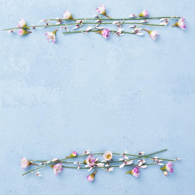 Espace Copie Avec Branches Florales Photo gratuit