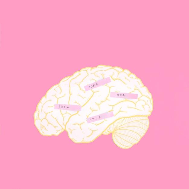Étiquette d'idée sur le cerveau sur le fond rose Photo gratuit