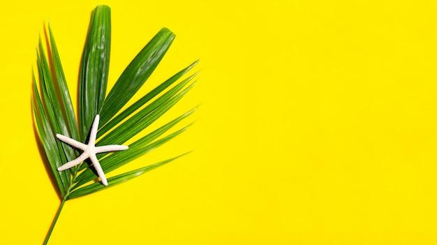 Étoile De Mer Sur Les Feuilles De Palmiers Tropicaux Sur Fond Jaune. Profitez Du Concept De Vacances D'été. Vue De Dessus Photo Premium