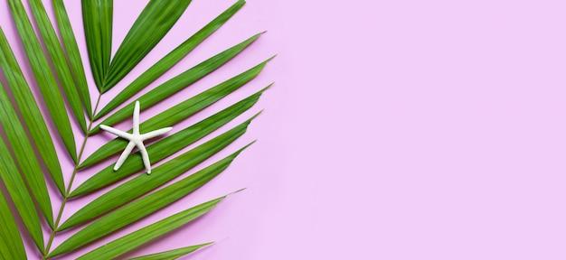 Étoile De Mer Sur Les Feuilles De Palmiers Tropicaux Sur Fond Rose. Profitez Du Concept De Vacances D'été. Copier L'espace Photo Premium