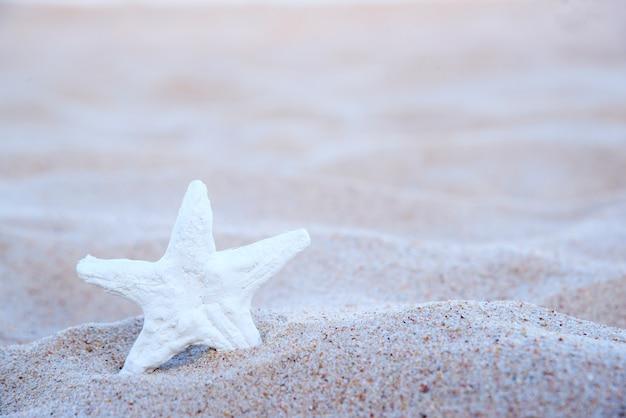 Etoile de mer sur la plage Photo gratuit