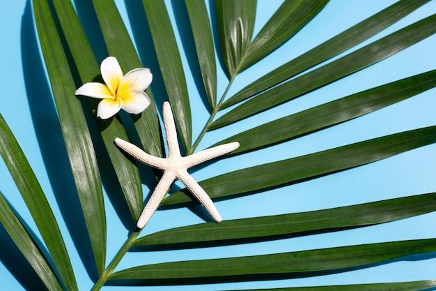 Étoile De Mer Avec Plumeria Ou Fleur De Frangipanier Sur Des Feuilles De Palmier Tropical Sur Fond Bleu. Profitez Du Concept De Vacances D'été. Vue De Dessus Photo Premium