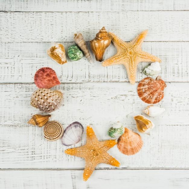 Étoile de poisson et coquillages sur le fond en bois Photo Premium
