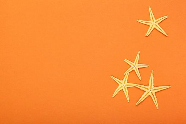 Étoiles De Mer Sur Un Fond Vibrant Coloré Lumineux Photo Premium