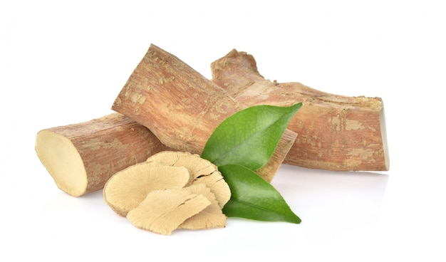 Eurycoma longifolia sur blanc Photo Premium