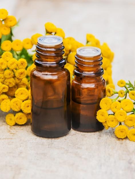 Extrait médicinal de tanaisie, teinture, décoction, huile, dans une petite bouteille. Photo Premium
