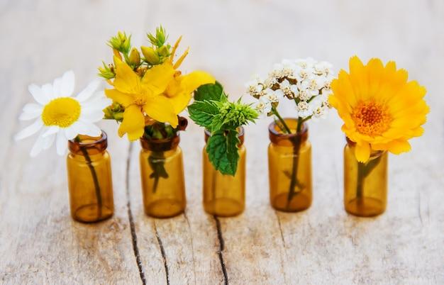 Extraits d'herbes dans de petites bouteilles. mise au point sélective. Photo Premium