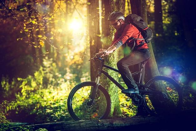Faire du vélo dans la forêt panoramique Photo gratuit