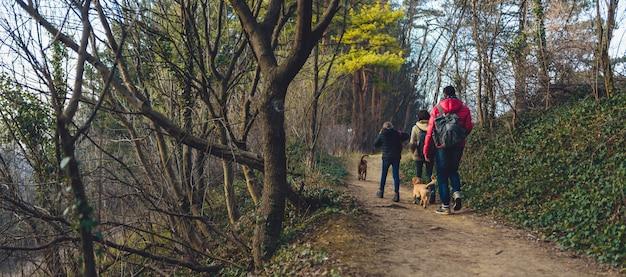 Famille, chien, randonnée, sentier montagne Photo Premium