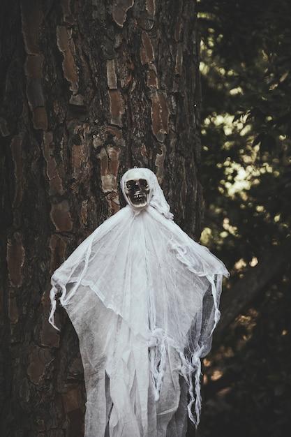 Fantôme, à, crâne, figure, pendre, arbre Photo gratuit